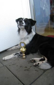 Pitús Pokal und Juno
